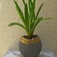 Balloon-planter-gold-mozaic-trim