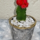 Grey-Marble-eco-resin-pot-fancy-succulent